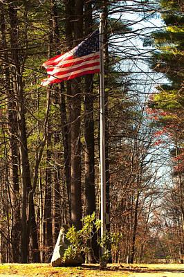 Photograph - Patriotic Walk by Paul Mangold