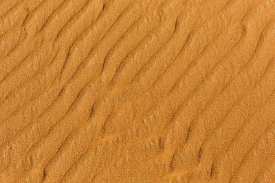 Photograph - Patterned Sand by Justin Albrecht