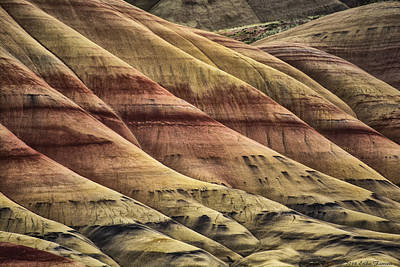 Photograph - Patterns by Erika Fawcett