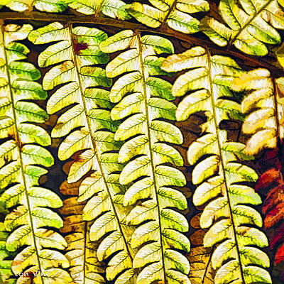 Patterns In Cinnamon Fern Art Print