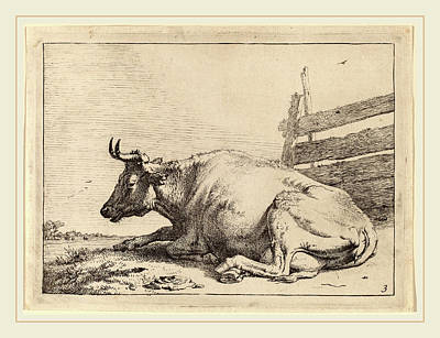 Fence Drawing - Paulus Potter Dutch, 1625-1654, Cow Lying Down Near A Fence by Litz Collection
