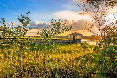 Photograph - Pawleys Island Gazebo by Ed Roberts