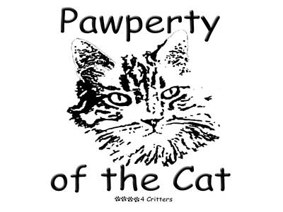 Photograph - Pawperty Of The Cat by Robyn Stacey