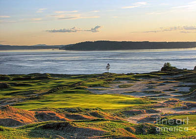 Photograph - Pax - Chambers Bay Golf Course by Chris Anderson