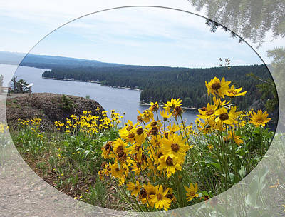 Photograph - Payette Lake And Flowers Too by Georgia Hamlin
