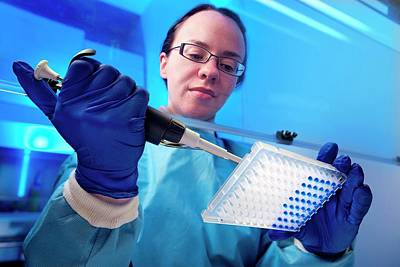 Pathogen Photograph - Pcr Drug-resistant Pathogen Test by Cdc