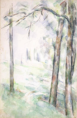 Impressionism Drawing - Pd.6-1966r The Woods, Aix-en-provence by Paul Cezanne