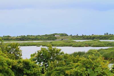 Seashore Photograph - Pea Island National Wildlife Refuge 16 by Cathy Lindsey