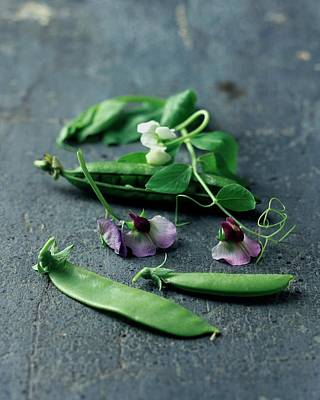 Pea Photograph - Pea Pods And Flowers by Romulo Yanes