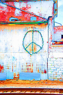 Photograph - Peace 3 by Minnie Lippiatt