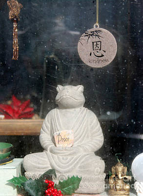 Storefront Digital Art - Peace And Kindness  by Steven  Digman