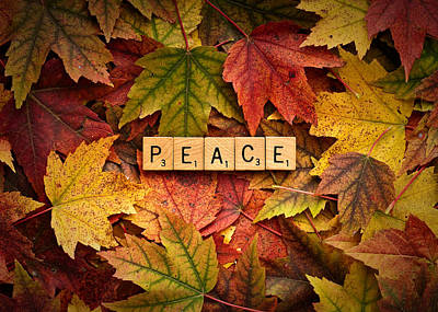 Photograph - Peace-autumn by  Onyonet  Photo Studios