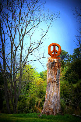 Photograph - Peace   by Cathy Shiflett