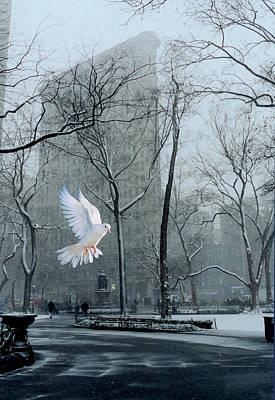Peace Art Print by David Klaboe