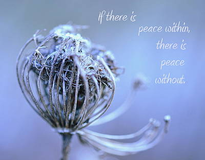 Photograph - Peace by Michelle Ayn Potter