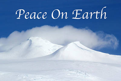 Photograph - Peace On Earth Card by Ginny Barklow