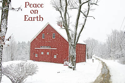 Backroad Photograph - Peace On Earth Holiday by Donna Doherty