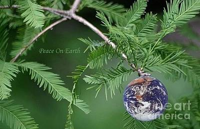 Photograph - Peace On Earth by Living Color Photography Lorraine Lynch