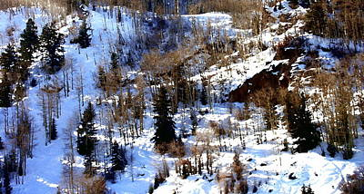 Photograph - Peace On The Mountain - Beaver Creek by Jacqueline M Lewis
