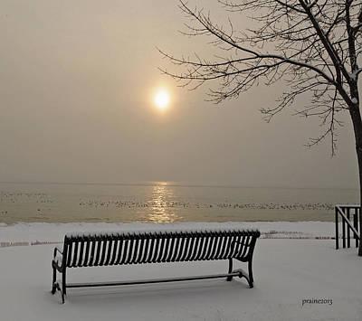 Photograph - Peace by Patti Raine