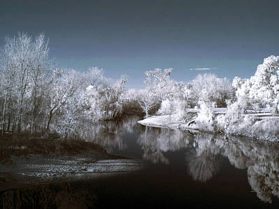 Fine Dining - Peace River North near Infrared Arcadia Florida USA by Sally Rockefeller
