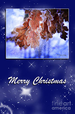 Photograph - Peaceful Christmas by Randi Grace Nilsberg