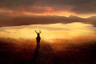 Deer Silhouette Digital Art - Peaceful Dawn by Jennifer Woodward