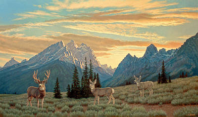 Bucks Painting - Peaceful Evening - Tetons by Paul Krapf