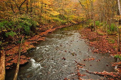 Photograph - Peaceful Fall by Julie Andel