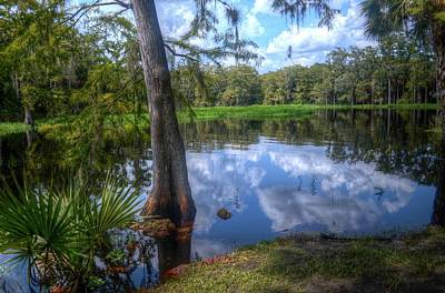 Peaceful Florida Art Print by Timothy Lowry