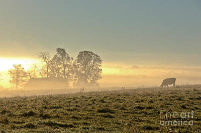 Photograph - Peaceful Foggy Sunrise by Cheryl Baxter