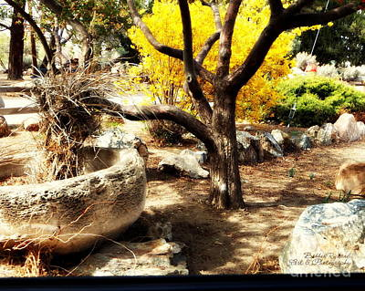 Photograph - Peaceful Garden by Bobbee Rickard