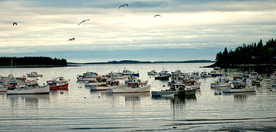 Photograph - Peaceful Harbor by Paul Mangold