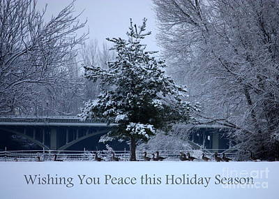 Photograph - Peaceful Holiday Card - Winter Landscape by Carol Groenen