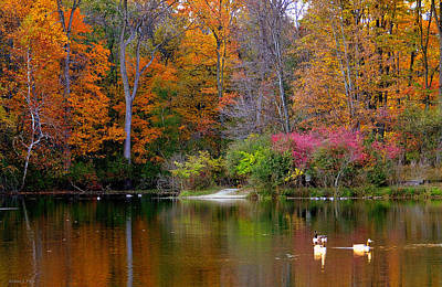 Photograph - Peaceful Lake by Andrea Platt