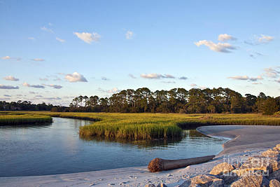 Photograph - Peaceful Marsh by Paula Porterfield-Izzo