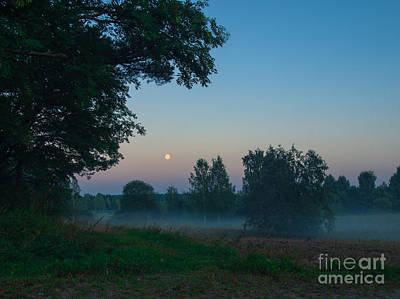 Photograph - Peaceful Misty Night by Ismo Raisanen