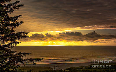 Photograph - Peaceful Pacific by Robert Bales