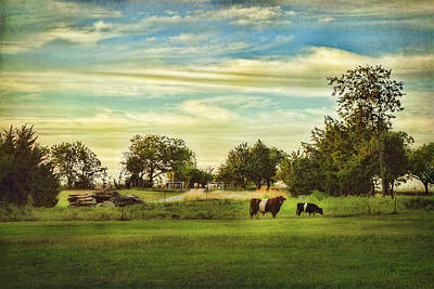 Photograph - Peaceful Pasture - Landscape  by Ann Powell
