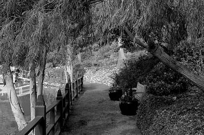 Photograph - Peaceful Path 2 by Richard J Cassato