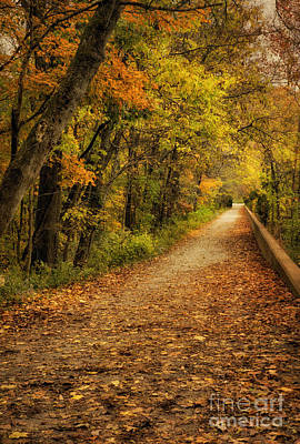 Photograph - Peaceful Pathway by Cheryl Davis