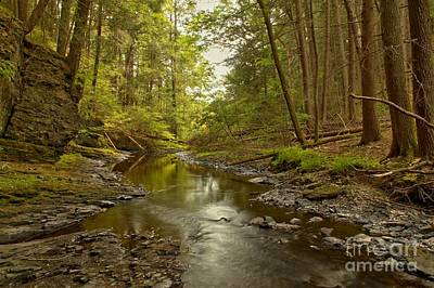 Photograph - Peaceful Reflections At Delware Water Gap by Adam Jewell