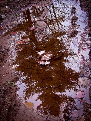 Photograph - Peaceful Reflections by Brian Gibson