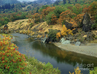 Photograph - Peaceful Stream Fall Color Fir Trees Central California by Dave Welling
