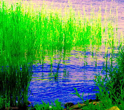 Summer Along The Canal Painting - Peaceful Stream  Quebec Landscape Art Tall Grasses At The Lakeshore Waterscene Carole Spandau by Carole Spandau