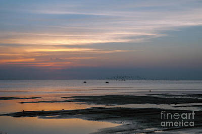 Peaceful Sunset Art Print by Tammy Smith