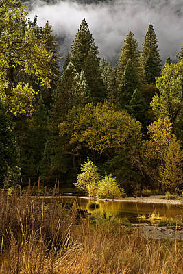 Peaceful Yosemite C6j8124 Art Print