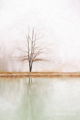 Peacefulness Art Print