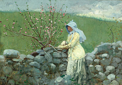 Winslow Homer Painting - Peach Blossoms by Winslow Homer