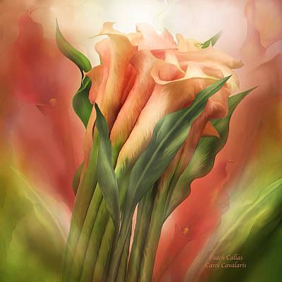 Lily Mixed Media - Peach Callas by Carol Cavalaris